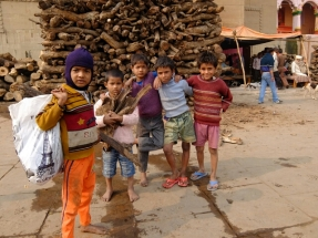 Holz sammeln für den Chaishop. Als Belohnung gibts Chai und viele liebevolle Worte